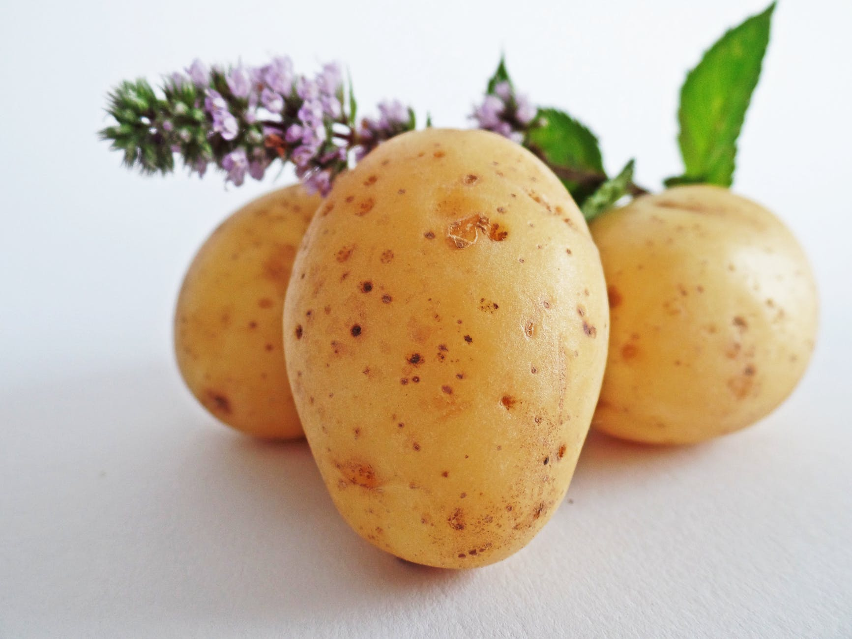 potatoes-vegetables-field-eat-51157.jpeg